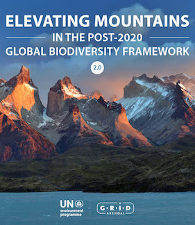 Elevating Mountains in the Post-2020 Framework Policy Brief